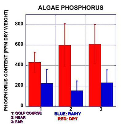 Algae Phosphorous