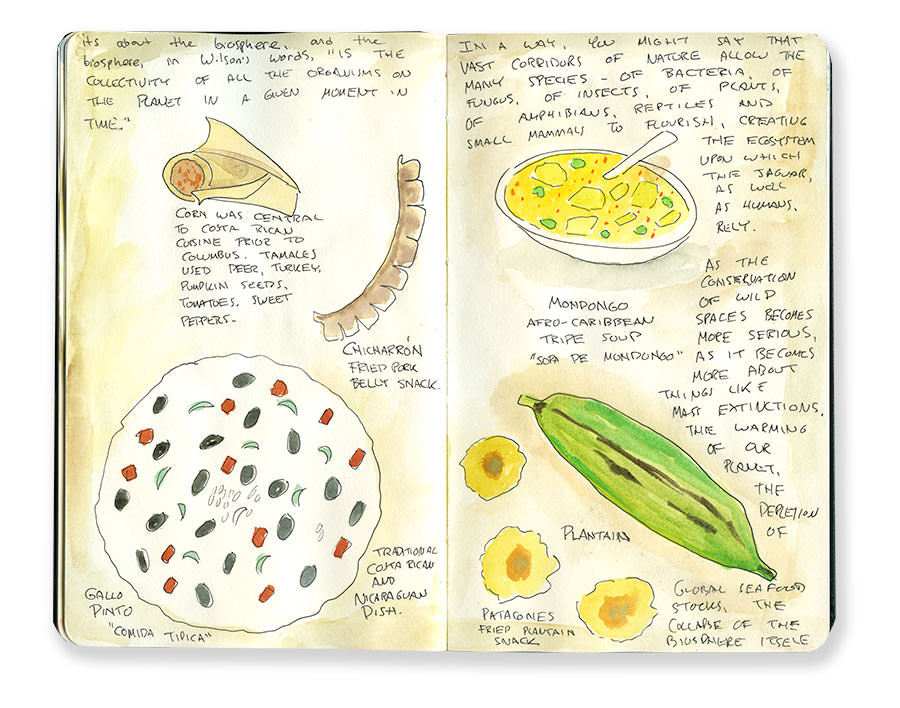 Costa Rica Sketches of Dishes and Cuisine