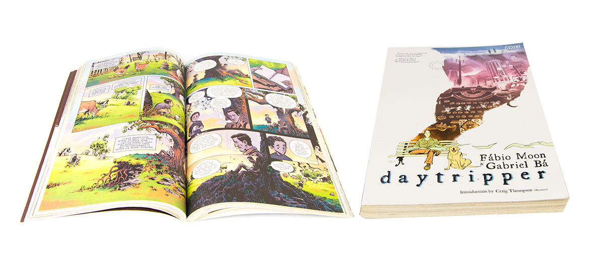 Daytripper Graphic Novel
