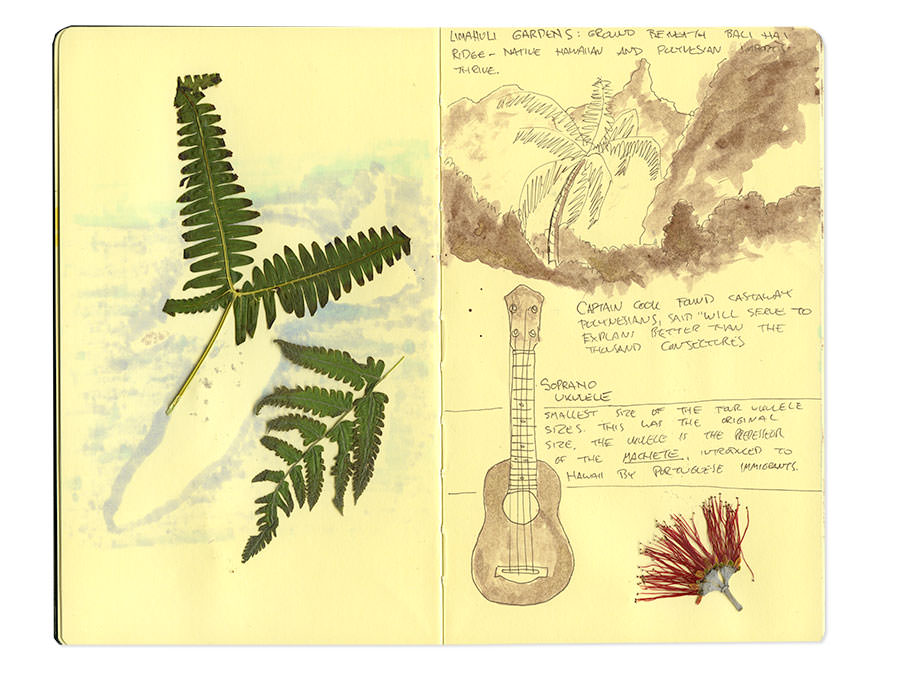 Hawaii Moleskine Journal