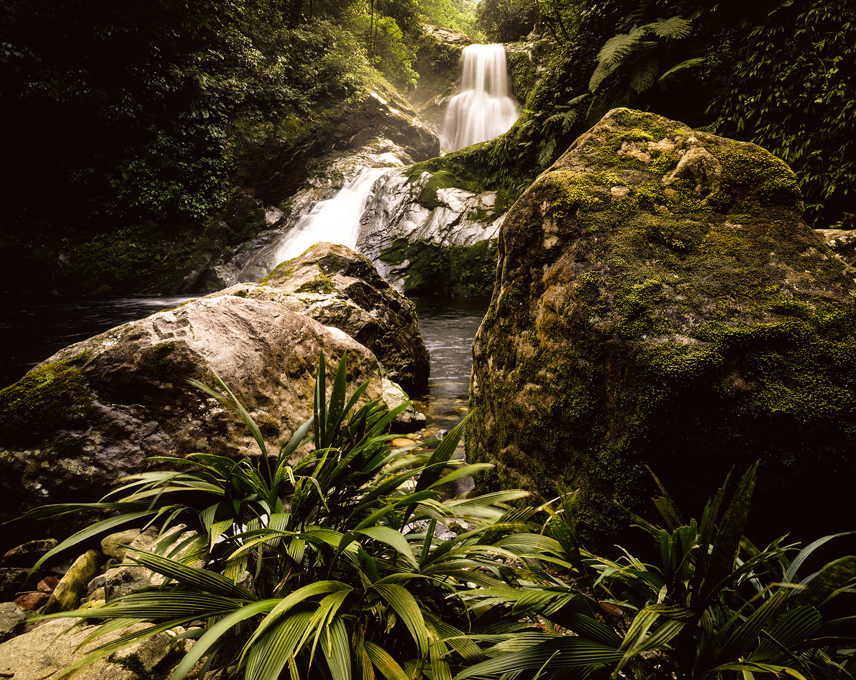 Beautiful waterfall in the Pico Bonito National Park in Honduras.