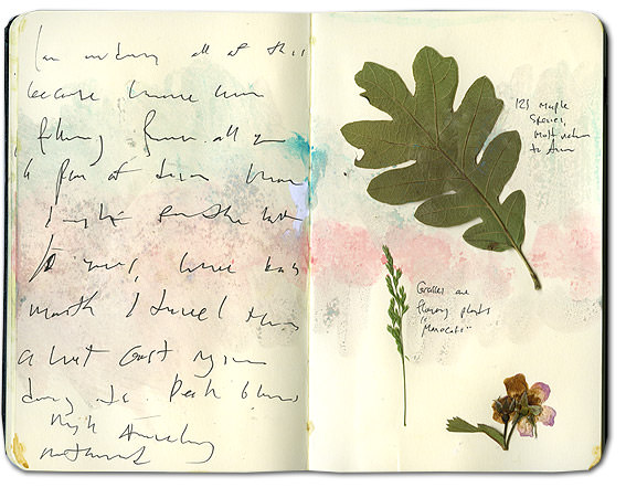 Moleskine Journal with pressed leaves