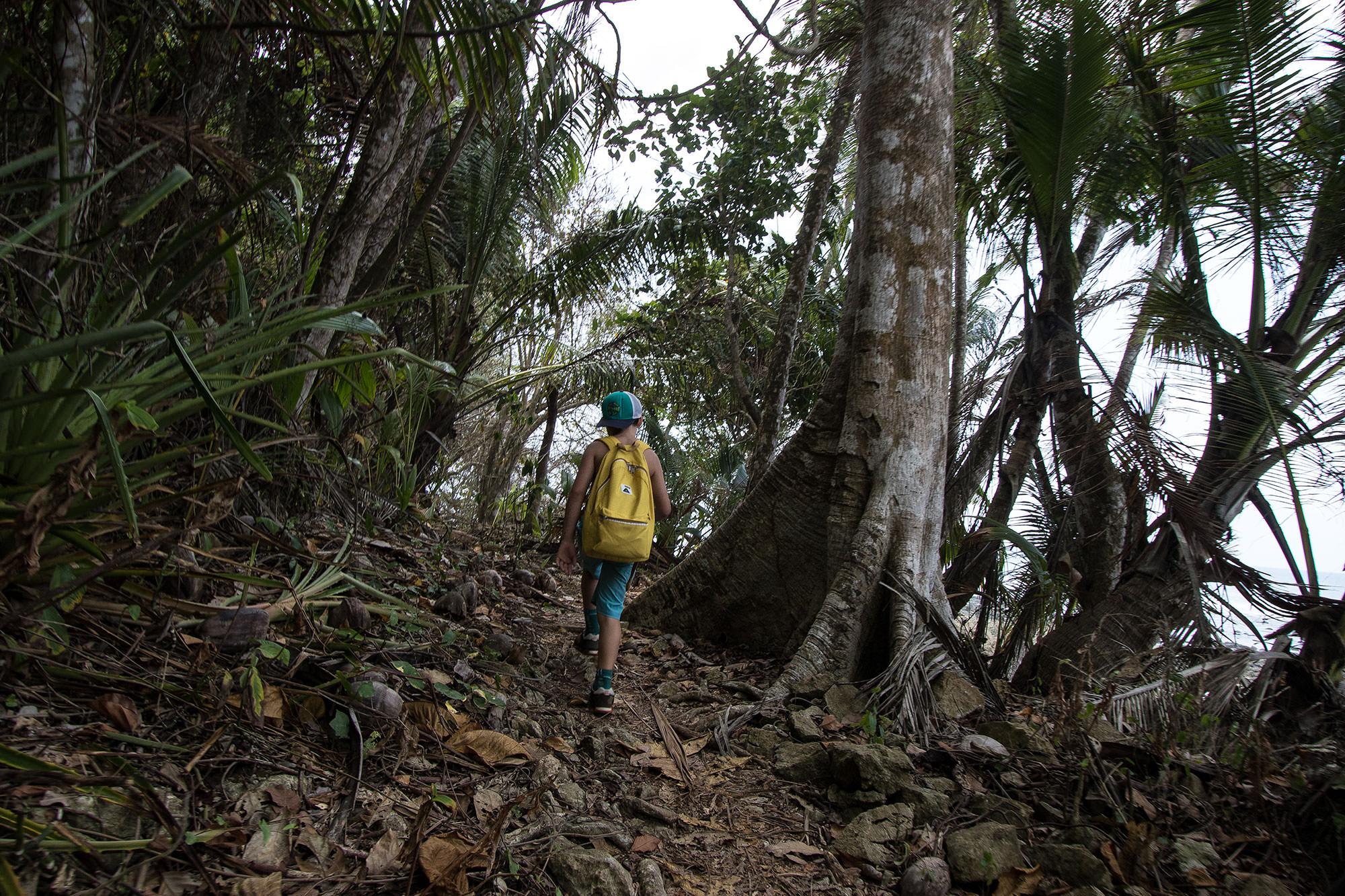 La Leona Hike in Corcovado National Park