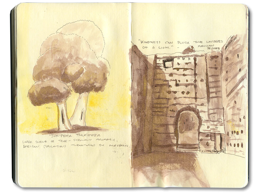 Marrakech Moleskine Journal