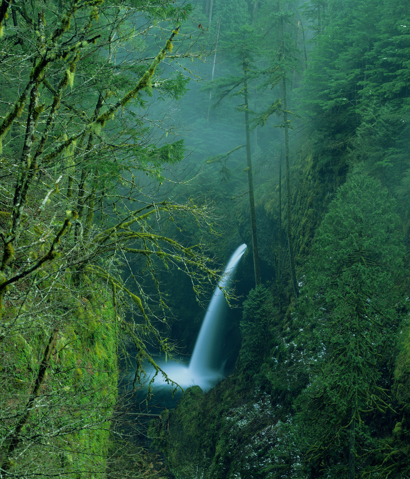 Image of Metlako Falls in the Eagle Creek Gorge within the vicinity of Portland, Oregon.