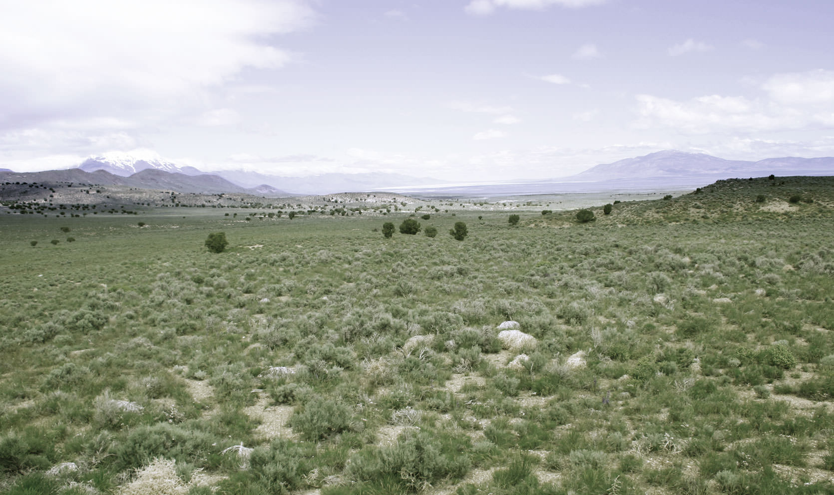 Nevada Landscape Photo
