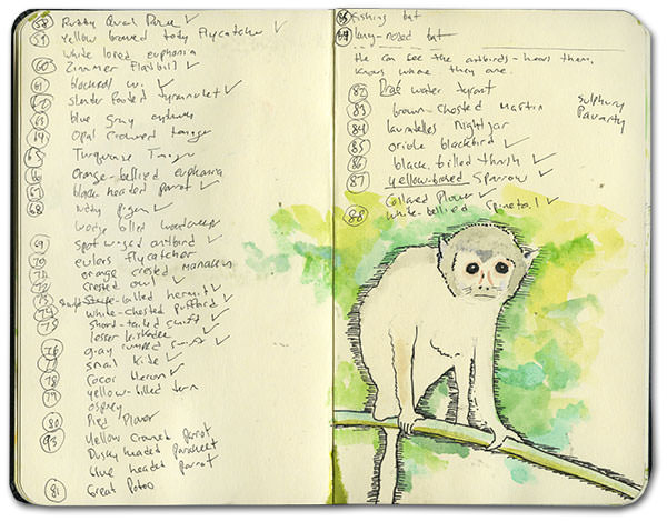 Moleskine of the Amazon
