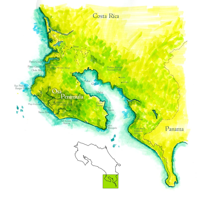 osa peninsula costa rica map Osa Peninsula Map Handpainted Map Of Osa Peninsula Costa Rica osa peninsula costa rica map