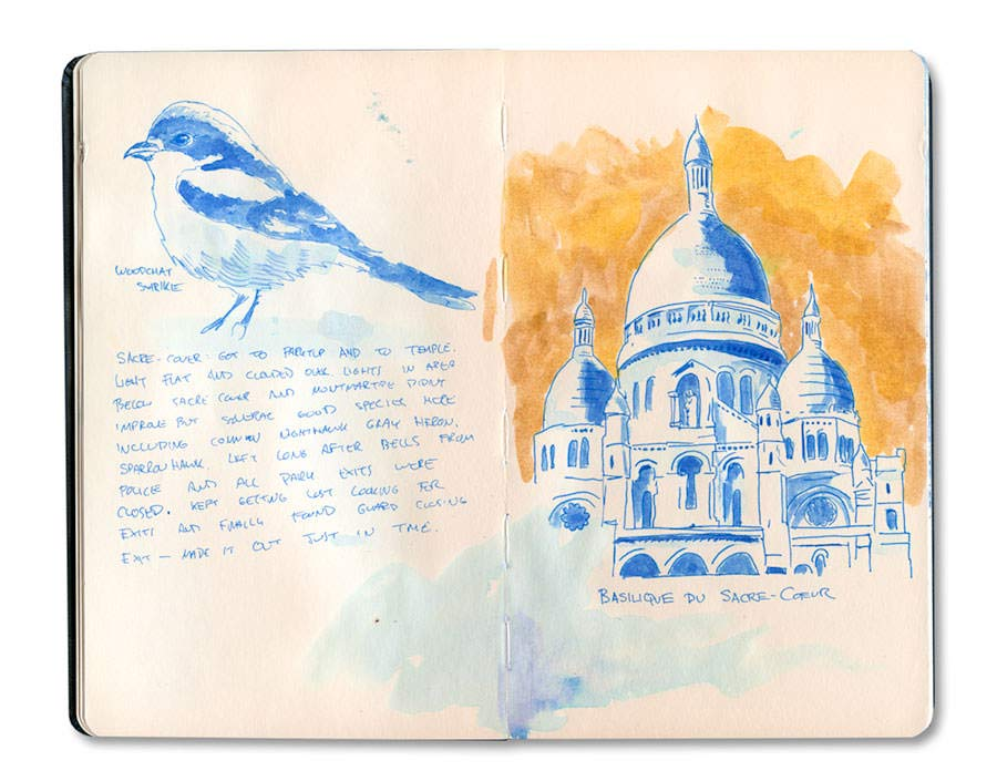 Paris Journal: Sacre Couer in Blue Ink