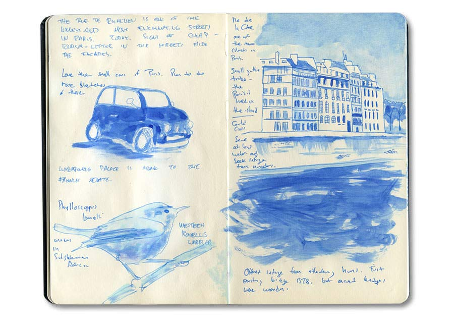 Paris Journal: Small cars, Ile de la Cite