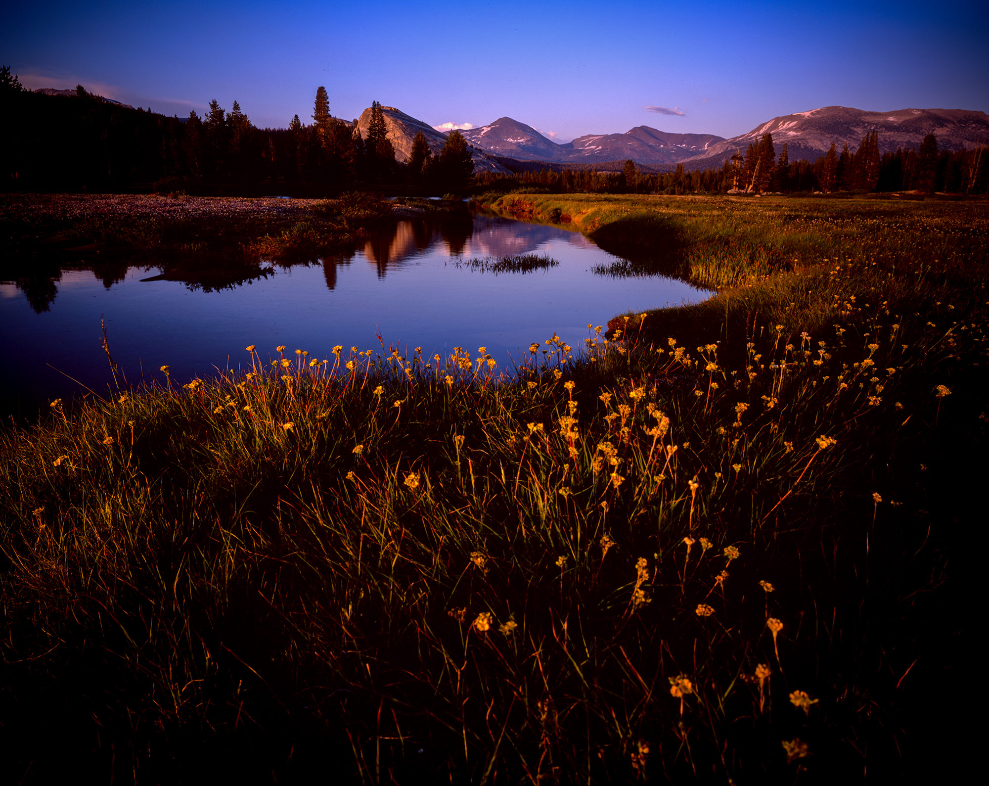Tuolomne Meadows, Yosemite National Park, California