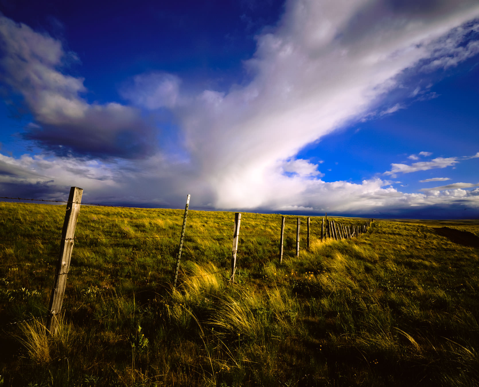 Fenceposts and clouds on the Zumwalt Prairie